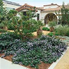 Xeriscape Ideas Zone Garden Design on drought garden design ideas, butterfly garden design ideas, spring garden design ideas, patio garden design ideas, tree garden design ideas, hardscape garden design ideas, wildflower garden design ideas, grass garden design ideas, community garden design ideas, plant rock garden ideas, traditional garden design ideas, arizona garden design ideas, rain garden design ideas, home garden design ideas, perennial garden design ideas, low water front yard landscape design ideas, landscape garden design ideas, cottage garden ideas, native garden design ideas, water garden design ideas,
