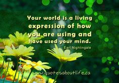 Your world is a living expression of how you are using and have used your mind.
