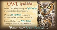 The most in-depth Owl Symbolism & Owl Meanings! Owl as a Spirit, Totem, & Power Animal. Plus, Owl in Celtic & Native American Symbols and Owl Dreams, too!