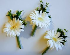 The Flower Girl Blog: white, yellow, navy blue, and green wedding