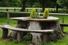 Tree Stump Table, Tree Table, A Table, Tree Stumps, Outdoor Trees, Outdoor Decor, Outdoor Stuff, Building A Trellis, Hydrangea Not Blooming