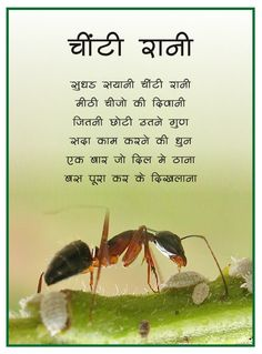 Akshar- Hindi Poems: Chinti Rani ( Ant ) Rhyming Poems For Kids, Urdu Poems For Kids, Preschool Poems, Poetry For Kids, Hindi Rhymes For Kids, Small Stories For Kids, Moral Stories For Kids, Nursery Rhymes Kindergarten, Kids Nursery Rhymes