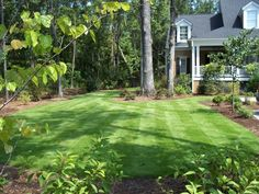 The lawn... droooooool...
