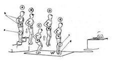 Recreation Fitness Team: Η ΒΕΛΤΙΩΣΗ ΜΥΪΚΗΣ ΙΣΧΥΟΣ (ΕΚΡΗΚΤΙΚΟΤΗΤΑΣ) ΜΕΣΩ ΤΗΣ ΣΥΝΔΥΑΣΤΙΚΗΣ ΜΕΘΟΔΟΥ ΠΡΟΠΟΝΗΣΗΣ ΚΑΙ Η ΑΝΑΠΤΥΞΗ ΤΗΣ ΑΛΤΙΚΟΤΗΤΑΣ