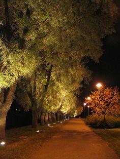 Premium Quality LED Lights: gel-usa.com