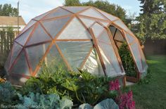 Awesome greenhouse ideas