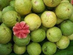 Guayabas! / Guavas