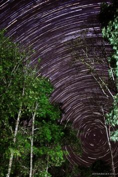 "Polaris at the center of star trails, Northern Thailand.  (Image: Teoh Hui Chieh)  This is a still from a timelapse made by Teoh Hui Chieh from Malaysia. He told Universe Today, ""Polaris may be very common for people like you in the northern hemisphere but to us at the equator, it's something that we don't see everyday."" ©Mona Evans, ""Polaris - 10 Fascinating Facts"" http://www.bellaonline.com/articles/art178625.asp"