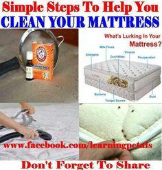 Get rid of dust mites