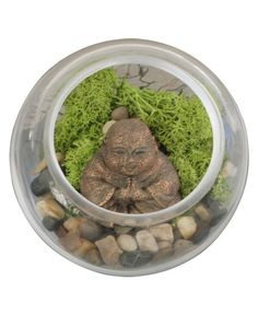 Glass terrarium with pebbles and self-sustaining moss comes with a miniature Happy Buddha statue that emanates joy and plentitude.