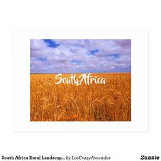 South Africa Rural Landscape Wheat Fields Postcar Postcard