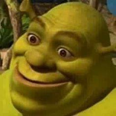 Memes Shrek, Memes Humor, Shrek Funny, Meme Meme, Funny Humor, Funny Profile Pictures, Funny Reaction Pictures, Meme Pictures, Stupid Funny Memes