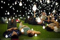 Scattered Light | Kings Park and Botanic Garden