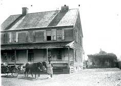 Limerick Plantation, next to Kensington, East branch of Cooper, west side --  Berkeley County (S.C.) taken in 1900