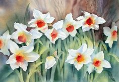 Ann_Mortimer_Daffodils
