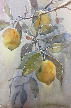 Acuarelas de Antonio Medina: Limones