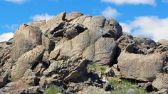 N. America's Oldest Known Petroglyphs Discovered In Nevada