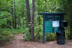 Hiking Trails & Biking Trails in Beavers Bend State Park