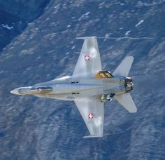 Military Jets, Military Aircraft, Swiss Air, Air Force, Fighter Jets, Hornet, Airplanes, Hardware, Models
