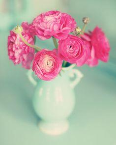 hot pink rununculus @ Meadowbrook farm blog. Beautiful photography