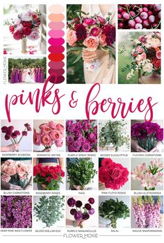 Flower Moxie helps brides DIY their flowers by providing florist-quality blooms video tutorials and printable instructions and recipes! Bulk Wedding Flowers, Affordable Wedding Flowers, Wedding Flower Packages, Floral Wedding, Wedding Colors, Wedding Bouquets, Wedding Ideas, Wax Flowers, Colorful Flowers