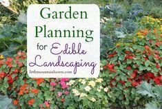 Garden Planning for Edible Landscaping