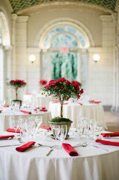 Arbolito de azaleas rojas, preciosas flores de formas sinuosas y colores intensos que te sorprenderá que sean flores de invierno #DecorarConFlores
