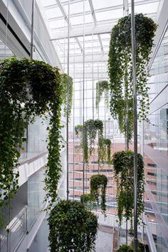 The atrium in the Lunder Building