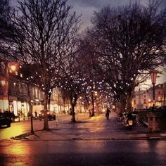 Gorgeous Cheltenham - Christmas fairly lights on the Promenade Cheltenham England, Cheltenham Spa, Great Places, Places Ive Been, Maybe Someday, Herefordshire, Travel Memories, Ireland Travel, Study Abroad