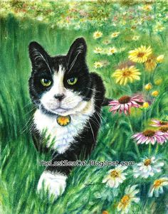 Tuxedo Cat Print  Cat Art  Black and White Cat Art  by phoenixchiu, $25.00
