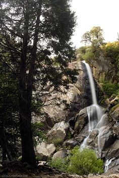 Grizzly Falls Kings Canyon National Park California // localadventurer.com