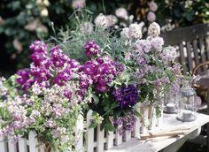 Blumen Arrangement Im Blumenkasten Mit Buchsbaum Und Pinken ... Blumen Arrangement Im Blumenkasten Ideen