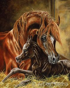 FIRST MOMENT - Arabian horse art. Giclee print on Fine Art Paper or Canvas. Art by Karina. Oil painting by Karina Peacemaker depicts an Arabian mare and foal sharing their first moment together. Watercolor Horse, Watercolor Animals, Horse Artwork, Horse Paintings, Beautiful Arabian Horses, Arabian Art, Horse Face, Horse Drawings, Equine Art