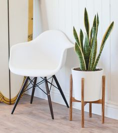 You can build a stylish plant stand -- even if you're not an experienced woodworker. Simple, clean instructions.