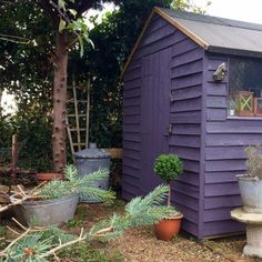Angie has two sheds in her garden, and she has cleverly painted them in colours from the opposite ends of the colour spectrum: lime green and lavender. The darker shade – Cuprinol Lavender – on this shed makes it recede into the back of the garden Purple Garden, Big Garden, Colorful Garden, Shade Garden, Back Gardens, Small Gardens, Painted Shed, Storage Shed Kits, Shed Base