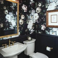 Powder Room with Black Wainscoting