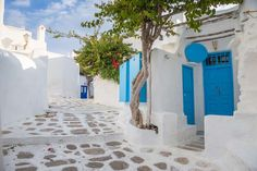 GREECE  -  March 4, 2017:     After all that eating, walk down cobblestone streets — like this one on Mykonos — and pass by whitewashed houses with colorful doors.