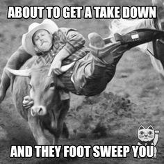 When it feels like it's your first rodeo. Bjj Memes, Nine Lives, Brazilian Jiu Jitsu, Feel Like, Rodeo, Feels, Horse, How To Get, Funny