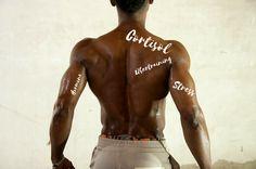 Stresshormon Cortisol Cortisol, Stress, Iron, Nutrition, Training, King, Workout, Swimwear, Coaching