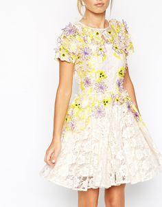 Image 3 ofASOS SALON Applique Petal Lace Skater Dress