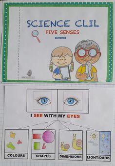 i cinque sensi in inglese scuola primaria Archivi - Jack Potato