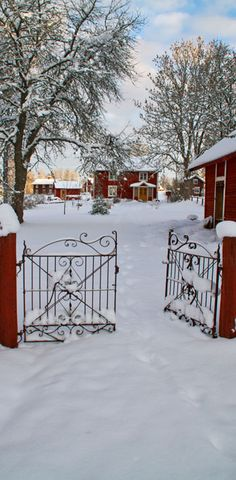 Winter in Småland, Sweden, I want to live in Sweden. It looks so beautiful there!