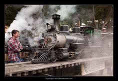 RGS 41 Model Steam Trains, Live Steam Locomotive, Choo Choo Train, Wooden Train, Train Engines, Steam Engine, Steamers, Hobbies, Miniature