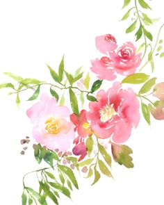 Watercolor flowers by Julie Song Ink www.juliiesongink.com