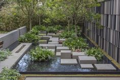 New Exterior Design Landscape Water Features Ideas Contemporary Landscape, Urban Landscape, Landscape Design, Contemporary Decor, Contemporary Wallpaper, Contemporary Stairs, Contemporary Cottage, Contemporary Apartment, Landscaping Tips
