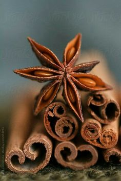 Raw Thai spices - star anise and cinnamon Food Photography Styling, Macro Photography, Food Styling, Amazing Food Photography, Photography Contract, Fruit Photography, Photography Business, Fall Inspiration, Spices And Herbs