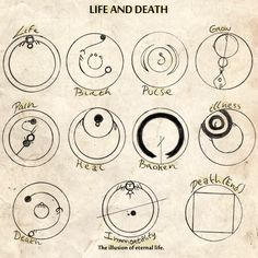 Part 2 of my Gallifreyan dictionary : Life and...