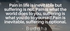 Buddha Zen, What The World, Inevitable, Life
