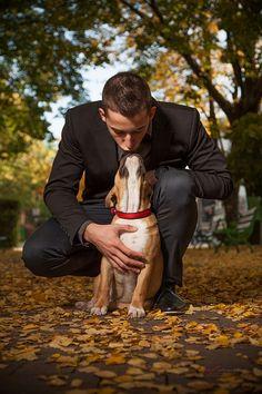 Hunde im Büro können ein echter Segen sein