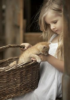 From Hungary. Cute little girl holds a basket with at least 2 kittens!